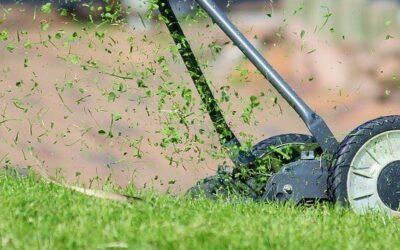 Sådan får du vejens flotteste græsplæne